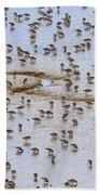 Semipalmated Sandpiper Calidris Pusilla Bath Towel