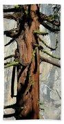 Sequoia And El Capitan Bath Towel