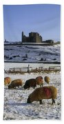 Sheep On A Snow Covered Landscape In Bath Towel
