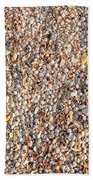 Shells Shells Shells Bath Towel