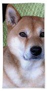 Shiba Inu Kobi-3 Bath Towel