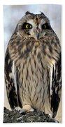 Short-eared Owl Bath Towel