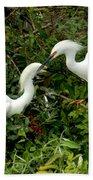 Showy Snowy Egrets Bath Towel