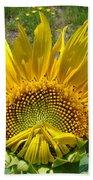 Shy Sunflower Bath Towel