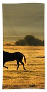 Silhouetted Horses Running Bath Towel