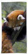 sleeping Small Panda Bath Towel