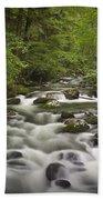 Smokey Mountain Stream No.362 Bath Towel