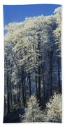 Snow Covered Trees In A Forest, County Bath Towel