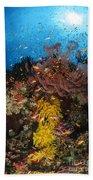 Soft Coral And Sea Fan, Fiji Bath Towel