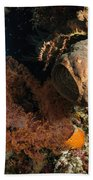 Soft Coral Seascape, Indonesia Bath Towel
