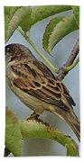 Sparrow I Bath Towel