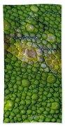 Spiny Desert Rhinoceros Chameleon Bath Towel