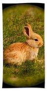 Spring Bunny Bath Towel