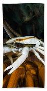 Squat Lobster Carrying Eggs, Indonesia Bath Towel
