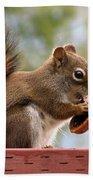 Squirrel And His Walnut Bath Towel