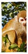 Squirrel Monkey Bath Towel