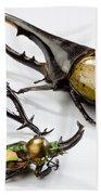 Stag Beetles Bath Towel