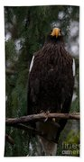 Steller's Sea Eagle Bath Towel