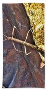 Stick Insect Bath Towel
