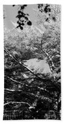 Streched Trees In Black And White Bath Towel