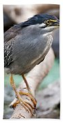 Striated Heron Hand Towel