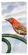 Summer Tanager Bath Towel