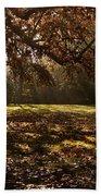 Sunlight In Trees Bath Towel