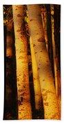 Sunlight On Aspen Trees, Twin Falls Bath Towel
