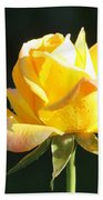 Sunlight On Yellow Rose Bath Towel
