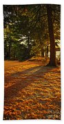 Sunset In Woods At Lake Shore Hand Towel