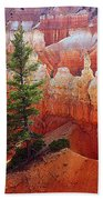 Sunset Point Trees Bath Towel