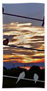 Sunsets And Birds Bath Towel