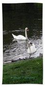 Swan Couple Bath Towel