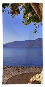 sycamore tree at the Lake Maggiore Bath Towel