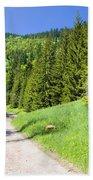 Tatra Mountains In Poland Bath Towel