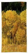 Teton Autumn Foliage Bath Towel