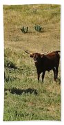 Texas Longhorns Panoramic Bath Towel