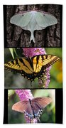 The Butterfly Collection Bath Towel
