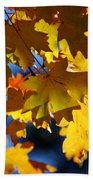 The Colors Of Autumn In Arizona  Bath Towel