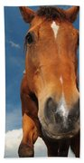 The Curious Horse Bath Towel