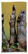 The Cypress Knees Chorus Hand Towel
