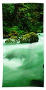The Dosewallups River  Bath Towel