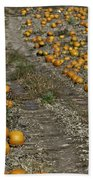 The Great Pumpkin Patch Trail Bath Towel