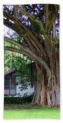 The House Beside The Banyan Tree Bath Towel