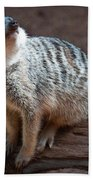 The Meercat  Bath Towel