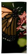 The Morning Monarch Bath Towel