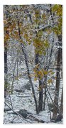The October Blizzard Begins Bath Towel