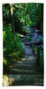 The Path To Iron Creek  Bath Towel