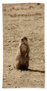The Prairie Dog Bath Towel