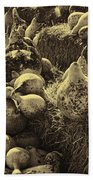 The Produce Of The Earth In Sepia Bath Towel